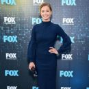 Emily VanCamp – 2017 FOX Upfront in NYC - 454 x 684