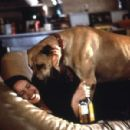 The Truth About Cats & Dogs (1996) - 454 x 299