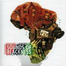 Sounds of Blackness Album - The Evolution of Gospel