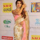 Priyanka Chopra:  Zee Cine Awards 2014 - 454 x 776