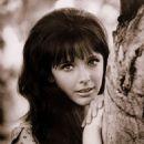 Brenda Scott - 454 x 590