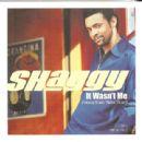Shaggy - 454 x 441