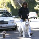 Billy Ray Cyrus takes his dogs out for a relaxing stroll through his neighborhood in Toluca Lake, California on April 4, 2014