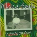 Dilana - Wonderfool