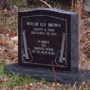 Willie Brown (musician)