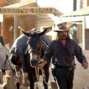 W. Earl Brown as Dan Dority on 'Deadwood'
