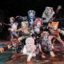 Cats (musical) - 454 x 353