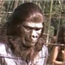 Norman Burton in Planet of the Apes as the Hunt Leader - 320 x 240