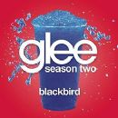 Chris Colfer - Blackbird