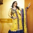 Zarine Khan Exclusive Roopam Dress Collections - 415 x 527