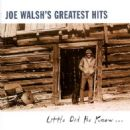 Joe Walsh - Joe Walsh Greatest Hits Little Did He Know