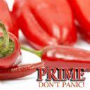 Prime Album - Don't Panic! - EP