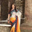 Esha Deol's New Photoshoot For A Designer Wear - 450 x 600