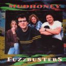 Fuzzbusters