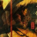 The Assassin (2015) - 454 x 194
