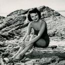 Dianne Foster - 454 x 567
