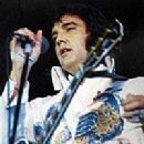Elvis Peacock - 200 x 291