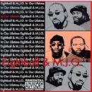 8Ball & MJG Album - In Our Lifetime Vol. 1