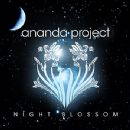 Wamdue Project - Night Blossom