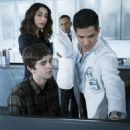 The Good Doctor (2017) - 454 x 568