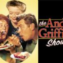 The Andy Griffith Show - 360 x 270