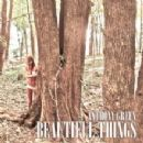 Anthony Green (musician) - Beautiful Things
