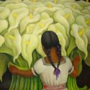 Diego Rivera - 323 x 430