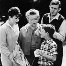 The Andy Griffith Show - 362 x 450