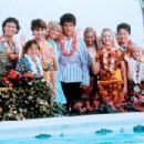 The Brady Bunch Movie In Hawaii