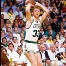 Larry Bird - 300 x 420