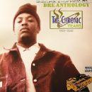 Anthology - The Chronic Years: 1995-2002
