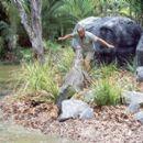 Steve Irwin in MGM's The Crocodile Hunter: Collision Course - 2002