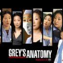 Grey's Anatomy (TV Series) Wallpaper - 454 x 340