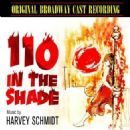 110 in the Shade Original 1963 Broadway Cast Starring Robert Horton - 454 x 454