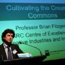 Brian Fitzgerald (academic)