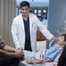 The Good Doctor (2017) - 454 x 303
