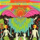 With a Little Help from My Fwends - The Flaming Lips