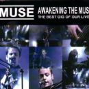 Awakening The Muse (The Best Gig Of Our Lives)