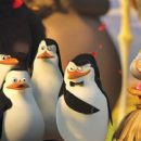 "(Left to right) Penguins Rico, Private (CHRISTOPHER KNIGHTS), Kowalski (CHRIS MILLER) and the Skipper (TOM McGRATH)—along with the Skipper's traveling companion—admire their handiwork in DreamWorks' ""Madagascar: Escape 2 Afri"