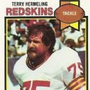 Terry Hermeling - 252 x 350