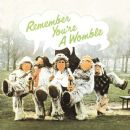 The Wombles - Remember You're A Womble