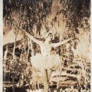 Marilyn Miller - 454 x 574