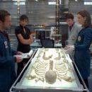 Bones (2005) - 454 x 255