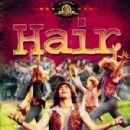 Hair - 300 x 424