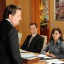The Good Wife (2009) - 454 x 367