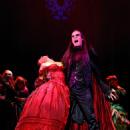 Tanz Der Vampire Original 1997 Cast Starring Filippo Strocchi - 454 x 605