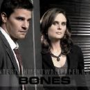 David Borneanaz and Emily Deschanel in Bones