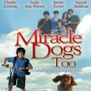 miracle dogs - 389 x 500