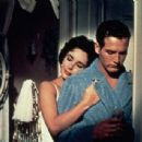 Cat on a Hot Tin Roof - Paul Newman - 454 x 307