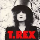Marc Bolan & T Rex - The Slider: 40th Anniversary Box Set